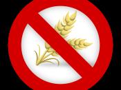 ciboon senza glutine